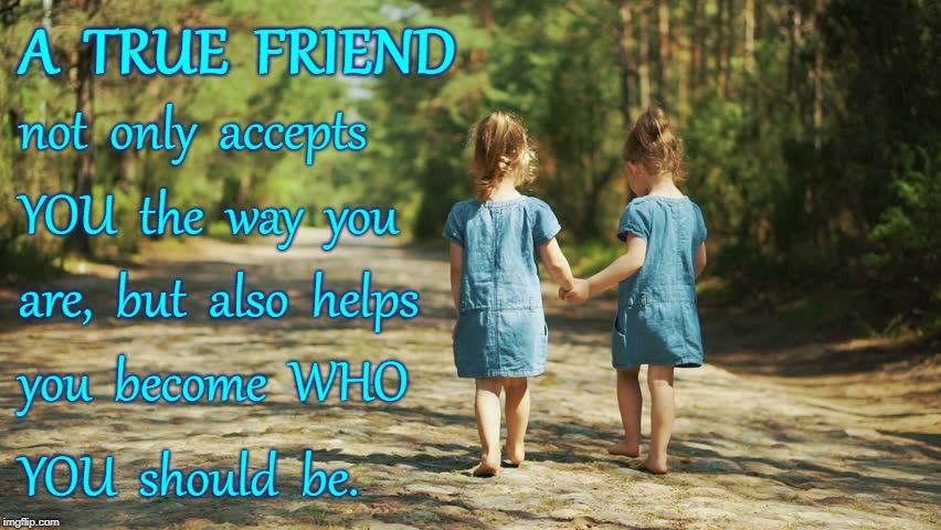 A True Friend Accepts & Helps... | A  TRUE  FRIEND YOU  should  be. not  only  accepts YOU  the  way  you are,  but  also  helps you  become  WHO | image tagged in true friend,accept,help you become | made w/ Imgflip meme maker