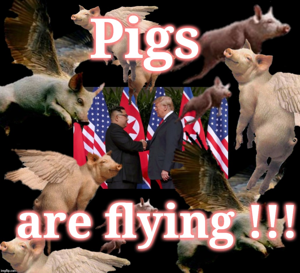 Oink !!! | Pigs are flying !!! | image tagged in pigs fly,donald trump,trump,kim jong un,peace,war | made w/ Imgflip meme maker
