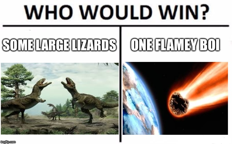 Who Would Win? Meme | SOME LARGE LIZARDS ONE FLAMEY BOI | image tagged in memes,who would win | made w/ Imgflip meme maker