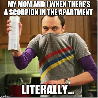 we kill scorpions... with hair spray  | MY MOM AND I WHEN THERE'S A SCORPION IN THE APARTMENT LITERALLY... | image tagged in air freshener sheldon cooper | made w/ Imgflip meme maker