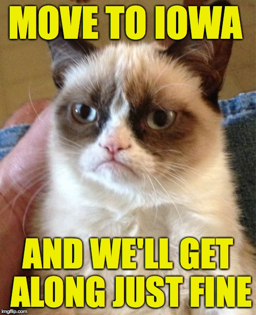 Grumpy Cat Meme | MOVE TO IOWA AND WE'LL GET ALONG JUST FINE | image tagged in memes,grumpy cat | made w/ Imgflip meme maker