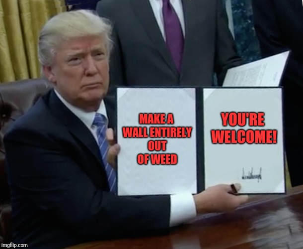 Trump Bill Signing Meme | MAKE A WALL ENTIRELY OUT OF WEED YOU'RE WELCOME! | image tagged in memes,trump bill signing | made w/ Imgflip meme maker
