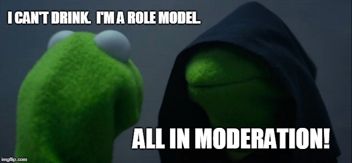 Evil Kermit Meme | I CAN'T DRINK.  I'M A ROLE MODEL. ALL IN MODERATION! | image tagged in memes,evil kermit | made w/ Imgflip meme maker
