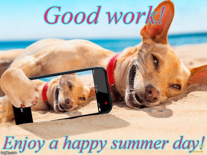 Good work! Enjoy a happy summer day! | image tagged in memes beach lucky dog vacation | made w/ Imgflip meme maker