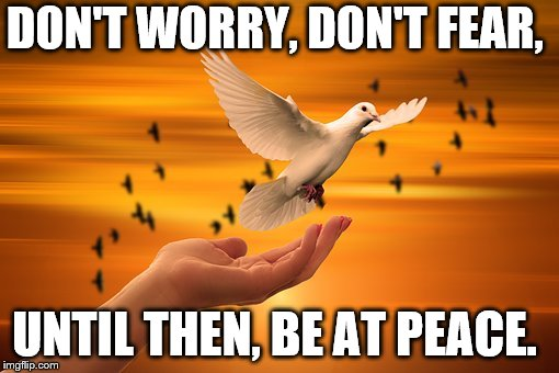 Dove of Peace | DON'T WORRY, DON'T FEAR, UNTIL THEN, BE AT PEACE. | image tagged in dove of peace | made w/ Imgflip meme maker