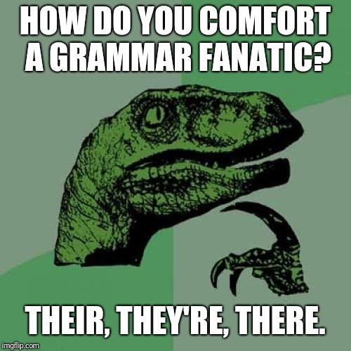 Philosoraptor Meme | HOW DO YOU COMFORT A GRAMMAR FANATIC? THEIR, THEY'RE, THERE. | image tagged in memes,philosoraptor | made w/ Imgflip meme maker