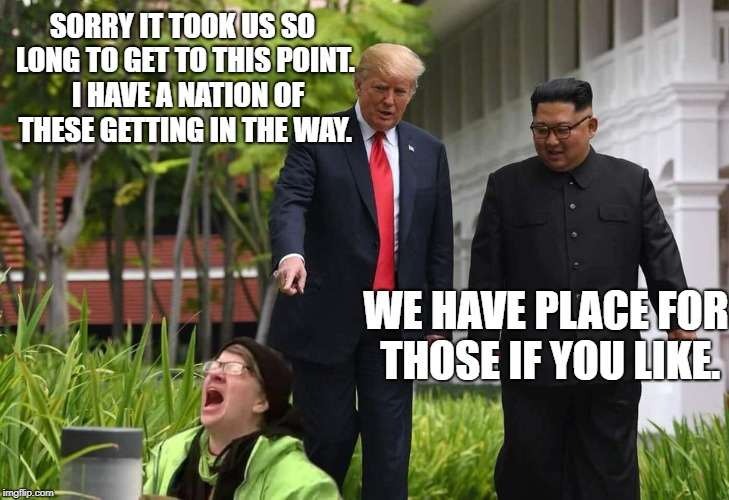 Historic Summit and Liberal tears | SORRY IT TOOK US SO LONG TO GET TO THIS POINT.  I HAVE A NATION OF THESE GETTING IN THE WAY. WE HAVE PLACE FOR THOSE IF YOU LIKE. | image tagged in liberal rage,donald trump,liberal logic,political meme | made w/ Imgflip meme maker