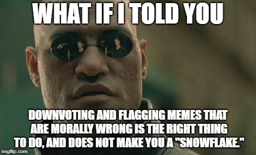 "Matrix Morpheus Meme | WHAT IF I TOLD YOU DOWNVOTING AND FLAGGING MEMES THAT ARE MORALLY WRONG IS THE RIGHT THING TO DO, AND DOES NOT MAKE YOU A ""SNOWFLAKE."" 