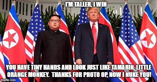 I'M TALLER, I WIN YOU HAVE TINY HANDS AND LOOK JUST LIKE TAMARIN, LITTLE ORANGE MONKEY.  THANKS FOR PHOTO OP, NOW I NUKE YOU! | image tagged in trump,kim,north korea | made w/ Imgflip meme maker
