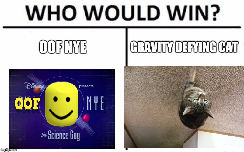 OOF NYE GRAVITY DEFYING CAT | image tagged in memes,who would win | made w/ Imgflip meme maker