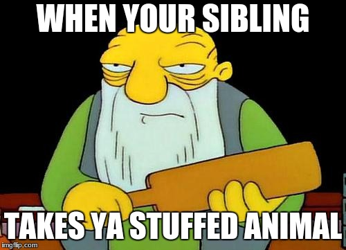 That's a paddlin' Meme | WHEN YOUR SIBLING TAKES YA STUFFED ANIMAL | image tagged in memes,that's a paddlin' | made w/ Imgflip meme maker