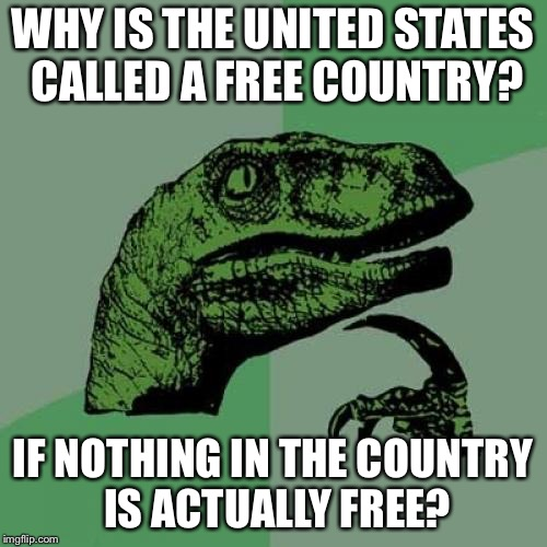 Philosoraptor | WHY IS THE UNITED STATES CALLED A FREE COUNTRY? IF NOTHING IN THE COUNTRY IS ACTUALLY FREE? | image tagged in memes,philosoraptor,united states,free | made w/ Imgflip meme maker