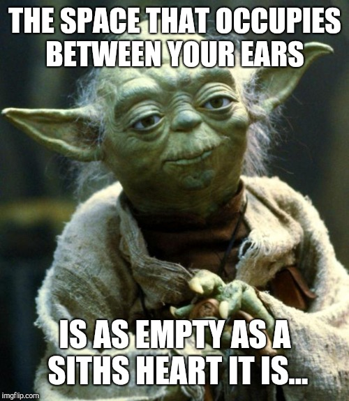 Yoda  | THE SPACE THAT OCCUPIES BETWEEN YOUR EARS IS AS EMPTY AS A SITHS HEART IT IS... | image tagged in memes,star wars yoda | made w/ Imgflip meme maker