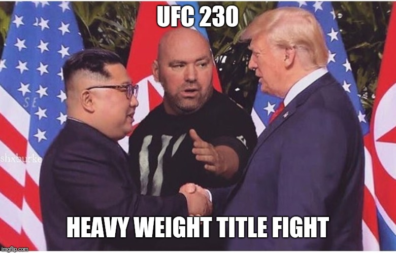 One for the books | UFC 230 HEAVY WEIGHT TITLE FIGHT | image tagged in donald trump,kim jong un,ufc,memes,funny,fight | made w/ Imgflip meme maker