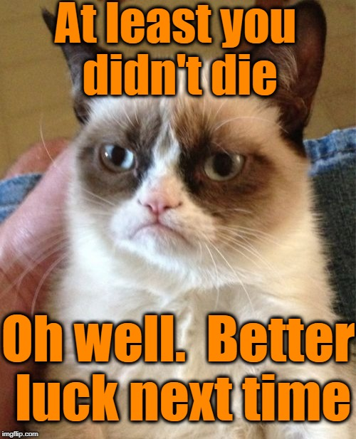 Grumpy Cat Meme | At least you didn't die Oh well.  Better luck next time | image tagged in memes,grumpy cat | made w/ Imgflip meme maker