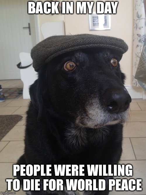 Back In My Day Dog | BACK IN MY DAY PEOPLE WERE WILLING TO DIE FOR WORLD PEACE | image tagged in back in my day dog | made w/ Imgflip meme maker