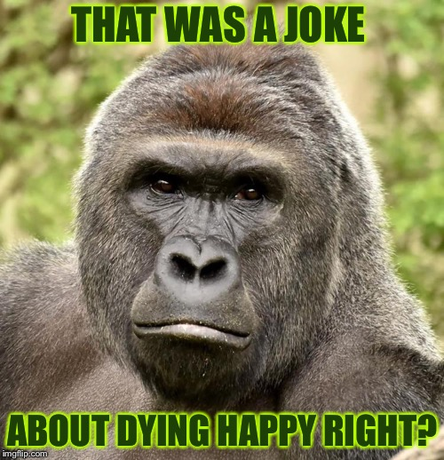 Har | THAT WAS A JOKE ABOUT DYING HAPPY RIGHT? | image tagged in har | made w/ Imgflip meme maker
