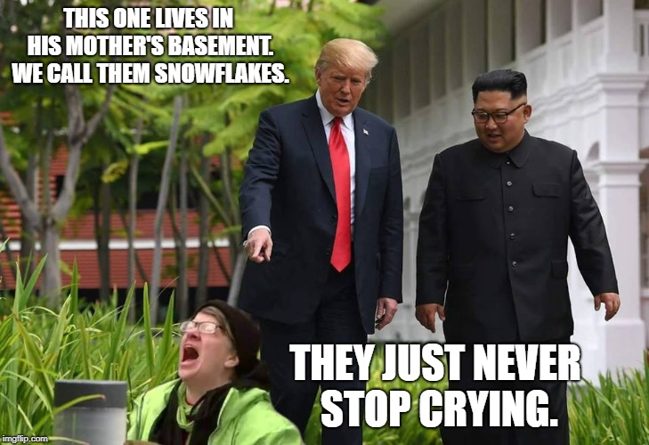 They pop up like weeds. | THIS ONE LIVES IN HIS MOTHER'S BASEMENT. WE CALL THEM SNOWFLAKES. THEY JUST NEVER STOP CRYING. | image tagged in donald trump,kim jung un,north korea,snowflakes | made w/ Imgflip meme maker