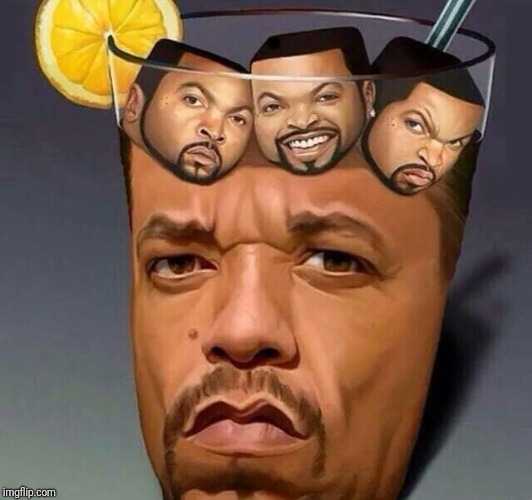 Ice's | . | image tagged in memes,funny,dank,ice cube,ice t | made w/ Imgflip meme maker