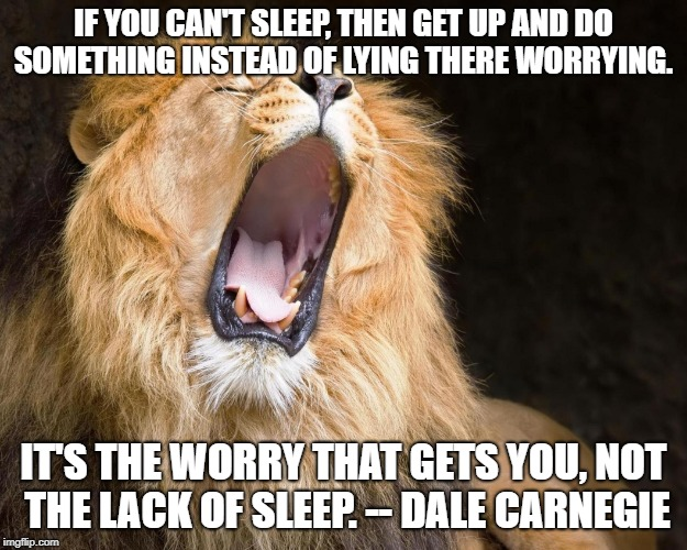 IF YOU CAN'T SLEEP, THEN GET UP AND DO SOMETHING INSTEAD OF LYING THERE WORRYING. IT'S THE WORRY THAT GETS YOU, NOT THE LACK OF SLEEP. -- DA | image tagged in climate change action | made w/ Imgflip meme maker