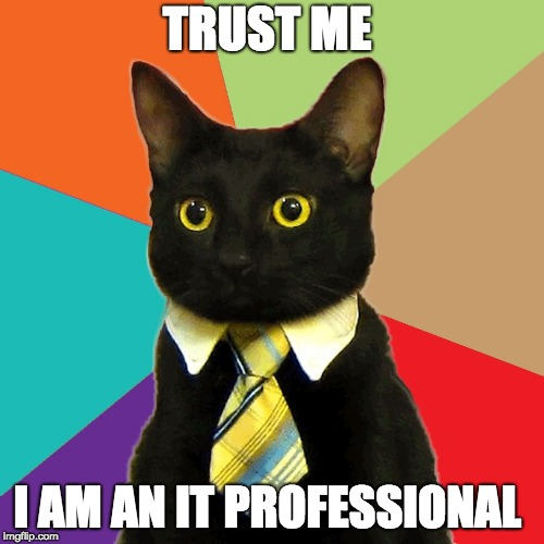 TRUST ME I AM AN IT PROFESSIONAL | image tagged in professional cat | made w/ Imgflip meme maker