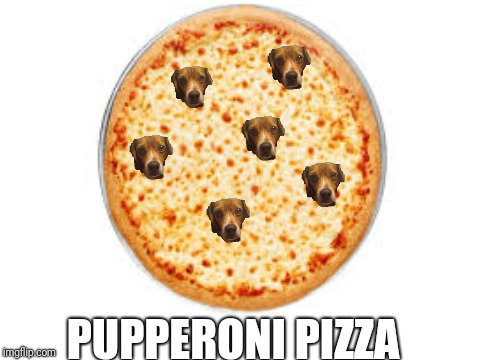 Pupperoni pizza  | PUPPERONI PIZZA | image tagged in dog,pupper,pizza,funny,cute | made w/ Imgflip meme maker