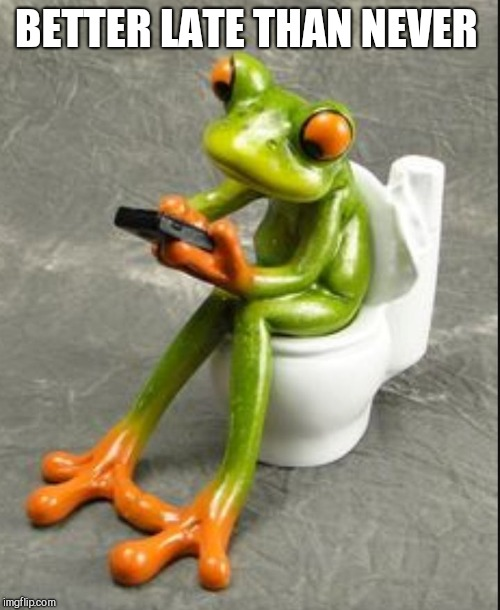 Frog on toilet  | BETTER LATE THAN NEVER | image tagged in frog on toilet | made w/ Imgflip meme maker