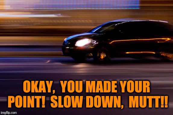 OKAY,  YOU MADE YOUR POINT!  SLOW DOWN,  MUTT!! | made w/ Imgflip meme maker