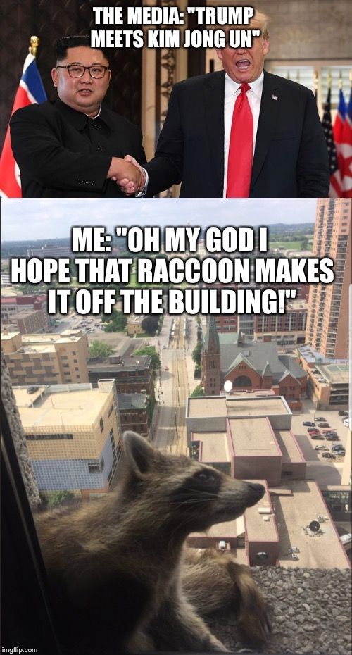 "Priorities  | THE MEDIA: ""TRUMP MEETS KIM JONG UN"" ME: ""OH MY GOD I HOPE THAT RACCOON MAKES IT OFF THE BUILDING!"" 