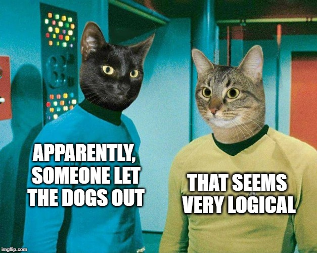 Someone let the dogs out. | THAT SEEMS VERY LOGICAL APPARENTLY, SOMEONE LET THE DOGS OUT | image tagged in cat meme,cats,star trek,who let the dogs out,logical | made w/ Imgflip meme maker