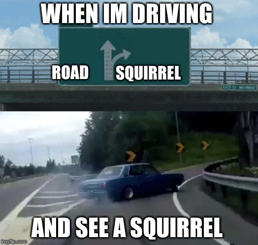 Left Exit 12 Off Ramp Meme | WHEN IM DRIVING AND SEE A SQUIRREL ROAD SQUIRREL | image tagged in memes,left exit 12 off ramp | made w/ Imgflip meme maker