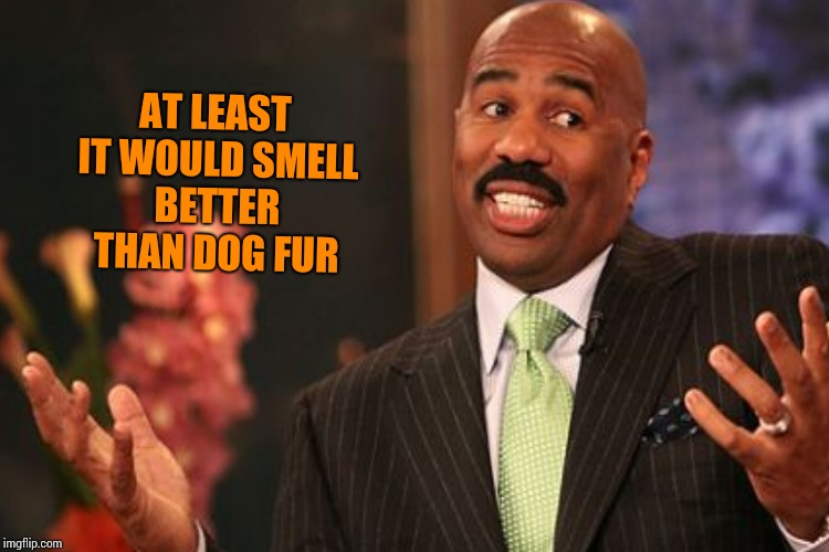 AT LEAST IT WOULD SMELL BETTER THAN DOG FUR | made w/ Imgflip meme maker