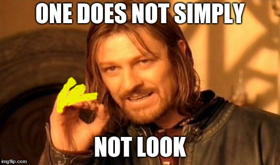 got 'em | ONE DOES NOT SIMPLY NOT LOOK | image tagged in memes,one does not simply | made w/ Imgflip meme maker