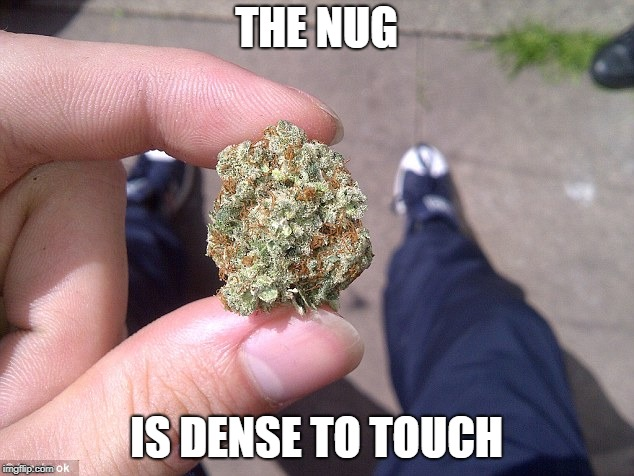 THE NUG IS DENSE TO TOUCH | made w/ Imgflip meme maker