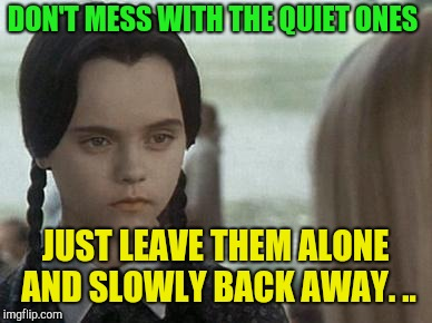 DON'T MESS WITH THE QUIET ONES JUST LEAVE THEM ALONE AND SLOWLY BACK AWAY. .. | image tagged in wednesday addams | made w/ Imgflip meme maker