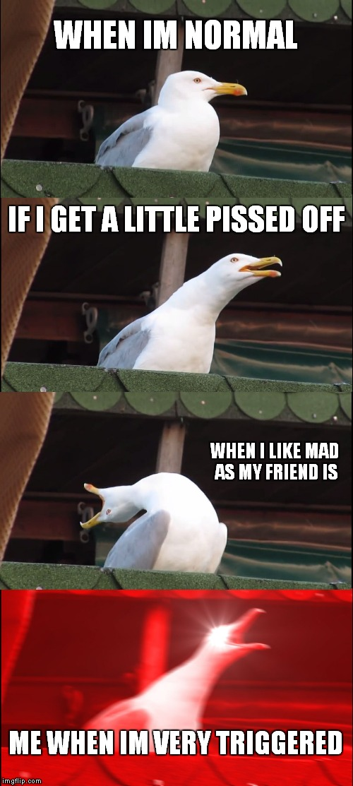 Inhaling Seagull Meme | WHEN IM NORMAL IF I GET A LITTLE PISSED OFF WHEN I LIKE MAD AS MY FRIEND IS ME WHEN IM VERY TRIGGERED | image tagged in memes,inhaling seagull | made w/ Imgflip meme maker