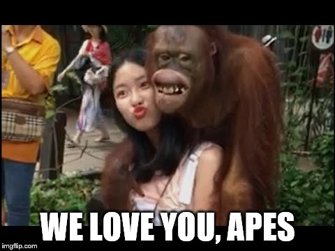WE LOVE YOU, APES | made w/ Imgflip meme maker