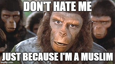 DON'T HATE ME JUST BECAUSE I'M A MUSLIM | image tagged in planet of the apes,roseanne barr,muslim,not racist,humor,dark humor | made w/ Imgflip meme maker