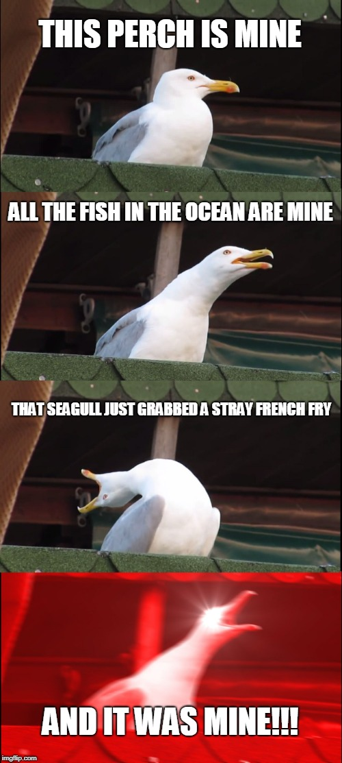 Inhaling Seagull Meme | THIS PERCH IS MINE ALL THE FISH IN THE OCEAN ARE MINE THAT SEAGULL JUST GRABBED A STRAY FRENCH FRY AND IT WAS MINE!!! | image tagged in memes,inhaling seagull | made w/ Imgflip meme maker