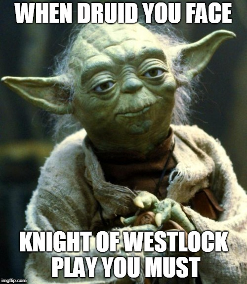 Star Wars Yoda Meme | WHEN DRUID YOU FACE KNIGHT OF WESTLOCK PLAY YOU MUST | image tagged in memes,star wars yoda | made w/ Imgflip meme maker