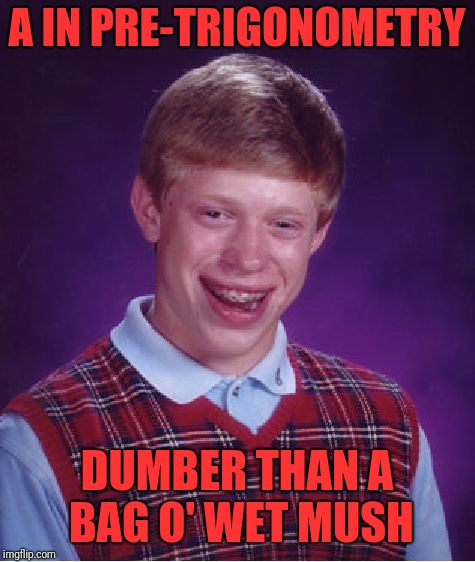 Bad Luck Brian Meme | A IN PRE-TRIGONOMETRY DUMBER THAN A BAG O' WET MUSH | image tagged in memes,bad luck brian | made w/ Imgflip meme maker