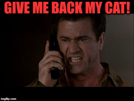 GIVE ME BACK MY CAT! | made w/ Imgflip meme maker