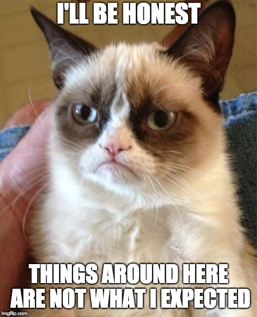 Grumpy Cat Meme | I'LL BE HONEST THINGS AROUND HERE ARE NOT WHAT I EXPECTED | image tagged in memes,grumpy cat | made w/ Imgflip meme maker
