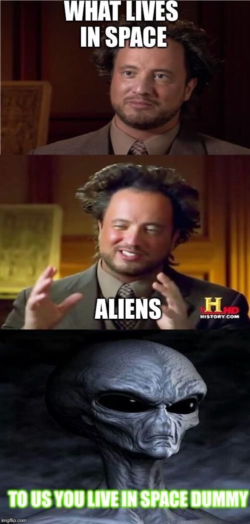 Bad Pun Aliens Guy | WHAT LIVES IN SPACE ALIENS TO US YOU LIVE IN SPACE DUMMY | image tagged in bad pun aliens guy | made w/ Imgflip meme maker