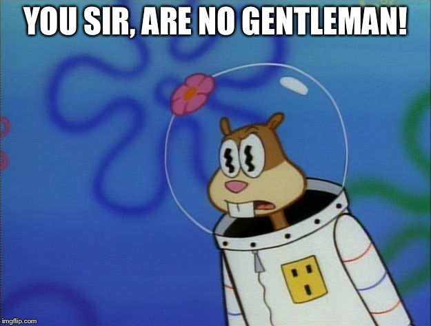 You, Sir are no gentleman! | YOU SIR, ARE NO GENTLEMAN! | image tagged in sandy cheeks peeved,memes,spongebob squarepants,sandy cheeks,funny | made w/ Imgflip meme maker