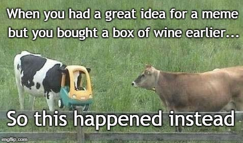 Don't drink and Meme | When you had a great idea for a meme but you bought a box of wine earlier... So this happened instead | image tagged in stupid cow,drunk,meme | made w/ Imgflip meme maker