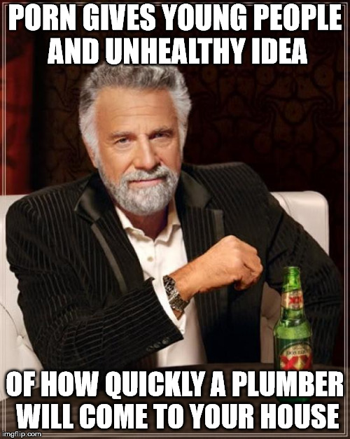 It also screws up their idea of what hotel maids look like. | PORN GIVES YOUNG PEOPLE AND UNHEALTHY IDEA OF HOW QUICKLY A PLUMBER WILL COME TO YOUR HOUSE | image tagged in memes,the most interesting man in the world | made w/ Imgflip meme maker