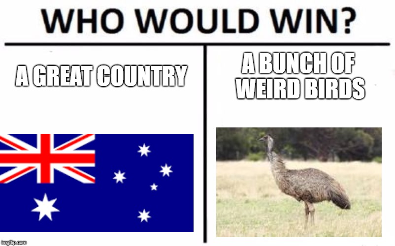 Who Would Win? Meme | A GREAT COUNTRY A BUNCH OF WEIRD BIRDS | image tagged in memes,who would win | made w/ Imgflip meme maker