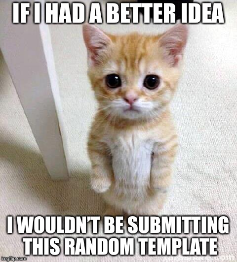 Cute Cat | IF I HAD A BETTER IDEA I WOULDN'T BE SUBMITTING THIS RANDOM TEMPLATE | image tagged in memes,cute cat | made w/ Imgflip meme maker