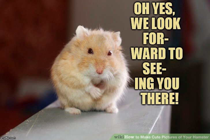 OH YES, WE LOOK FOR-  WARD TO SEE-   ING YOU    THERE! | made w/ Imgflip meme maker